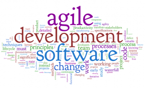 Agile software sevelopment
